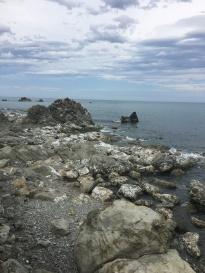 22 baypapa beach seehunde