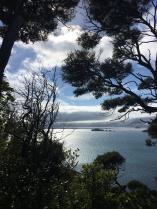 5 ausflug auf der vogelinsel