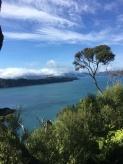 6 ausflug vogelinsel