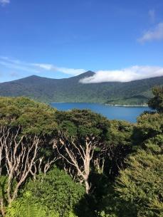 7 ausflug vogelinsel